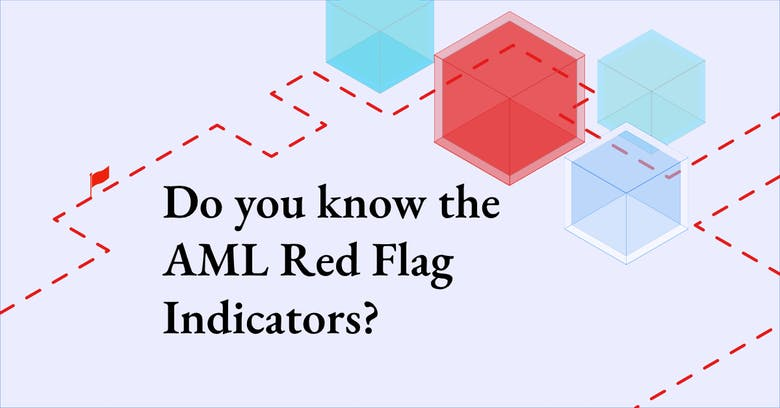 AML Red Flags that VASPs and FIs should know